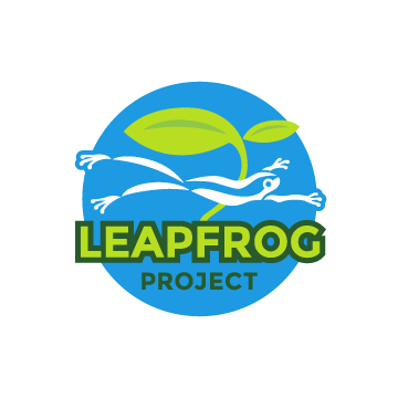 Leapfrog Project